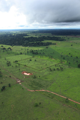 Once hidden by forest, carvings in land attest to Amazon's lost world